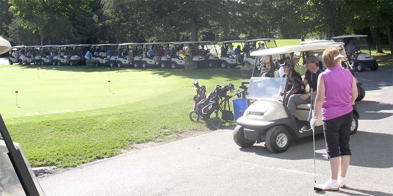 Golf-kingston-carts