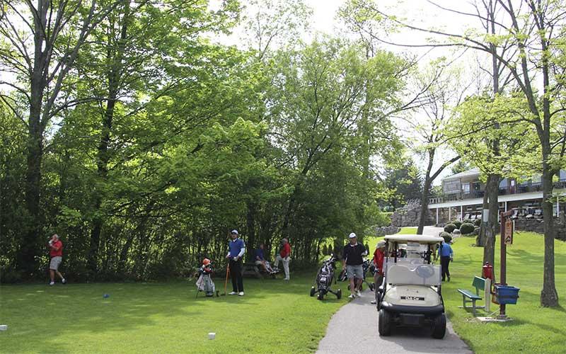 Golf-tee-3