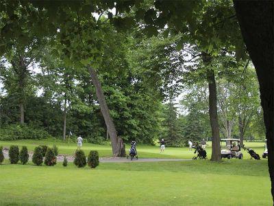 41-golf