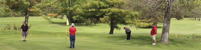 Golf-green-2b