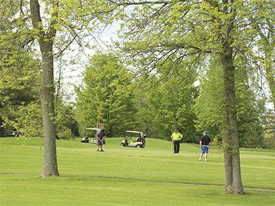 Golf-green-3