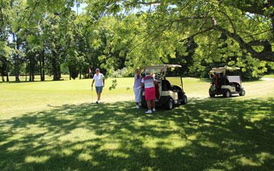 Golf-shade