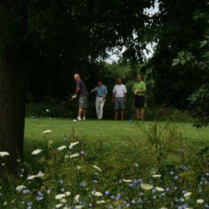Golfers-11-1