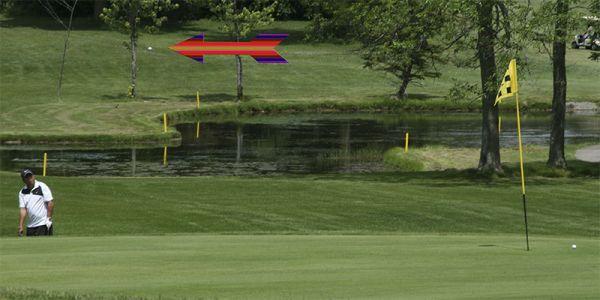 Nice-golf-shot
