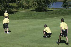 https://www.golfscoring.net/camdenbraes/mens/2016